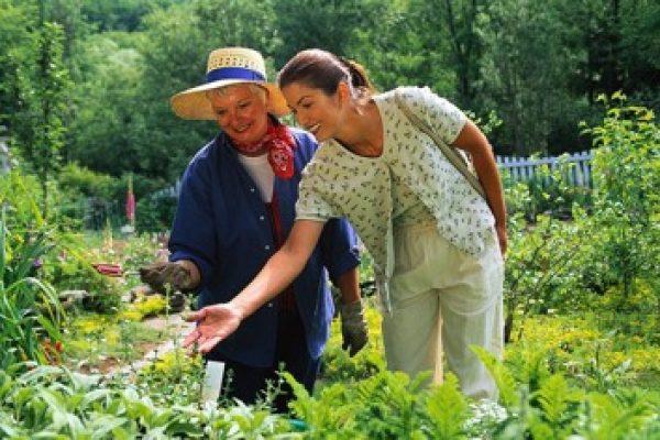 Garden mentor