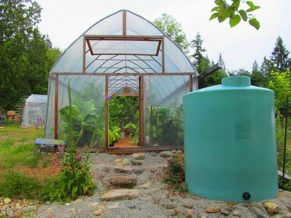 How to Build and Maintain a DIY Greenhouse @ Exotic Fruit Nursery | Roberts Creek | British Columbia | Canada